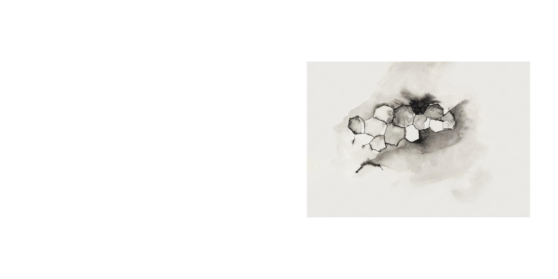 susana-estela-18
